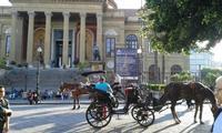 Teatro Massimo e Carrozza a cavallo Quel profilo li a destra della foto .... mio padreeeeeee hahahah