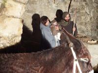 Presepe vivente Sacra Famiglia  - Termini imerese (754 clic)