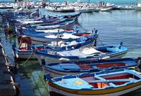 Barche di pescatori   - Mondello (1087 clic)