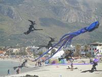 4° Festival Internazionale degli Aquiloni - 24 maggio 2012  - San vito lo capo (223 clic)