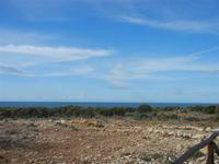 Riserva Naturale Orientata Capo Rama - 15 aprile 2012  - Terrasini (699 clic)