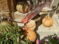 Cortile Carini - Laboratorio di Cocci per bambini - particolare - 6 settembre 2012  - Sciacca (1040 clic)