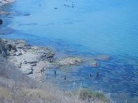 vista sul mare dal Belvedere - 26 agosto 2012  - Balestrate (452 clic)