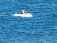barca da pesca nel golfo panorama dalla periferia est della città - 11 gennaio 2012  - Castellammare del golfo (370 clic)