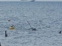 subacqueo - 29 gennaio 2012  - Nubia (1311 clic)
