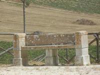 panchina in pietra nell'area archeologica - 5 agosto 2012  - Segesta (1006 clic)