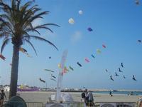 4° Festival Internazionale degli Aquiloni - 24 maggio 2012  - San vito lo capo (456 clic)