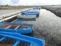 Oasi Naturale Orientata Saline di Trapani e Paceco barche - 15 gennaio 2012  - Nubia (541 clic)