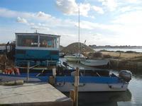 Saline Infersa - Imbarcadero per l'Isola di Mozia - 19 febbraio 2012  - Marsala (607 clic)