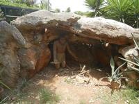 BIOPARCO di Sicilia - 17 luglio 2012  - Villagrazia di carini (2937 clic)