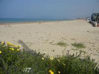 Spiaggia Plaja - 3 aprile 2012  - Castellammare del golfo (348 clic)