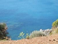Baia di Guidaloca - vista sul mare - 6 maggio 2012  - Castellammare del golfo (300 clic)