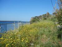 Baia di Guidaloca - 6 maggio 2012  - Castellammare del golfo (295 clic)