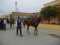 SPERONE - sfilata di cavalli - festa San Giuseppe Lavoratore - 29 aprile 2012  - Custonaci (525 clic)