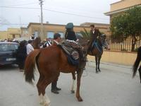 SPERONE - sfilata di cavalli - festa San Giuseppe Lavoratore - 29 aprile 2012  - Custonaci (434 clic)