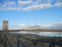 Torre di Nubia e Monte Erice - Oasi Naturale Orientata Saline di Trapani e Paceco (487 clic)