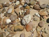 Zona Canalotto - sassi in riva al mare - 17 agosto 2012  - Alcamo marina (361 clic)