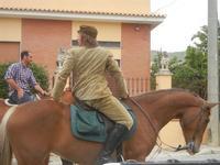 SPERONE - sfilata di cavalli - festa San Giuseppe Lavoratore - 29 aprile 2012  - Custonaci (480 clic)