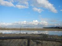 Oasi Naturale Orientata Saline di Trapani e Paceco - 15 gennaio 2012  - Nubia (573 clic)