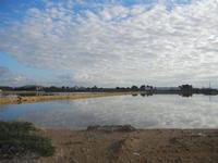 Oasi Naturale Orientata Saline di Trapani e Paceco - 15 gennaio 2012  - Nubia (853 clic)