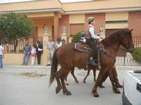 SPERONE - sfilata di cavalli - festa San Giuseppe Lavoratore - 29 aprile 2012  - Custonaci (463 clic)