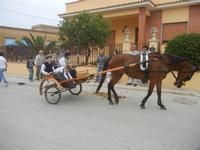 SPERONE - sfilata di cavalli - festa San Giuseppe Lavoratore - 29 aprile 2012  - Custonaci (486 clic)