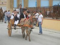 SPERONE - sfilata di cavalli - festa San Giuseppe Lavoratore - 29 aprile 2012  - Custonaci (561 clic)