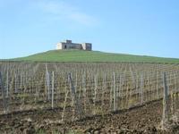 la casa sulla collina - UMMARI - 1 aprile 2012  - Trapani (541 clic)