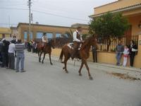 SPERONE - sfilata di cavalli - festa San Giuseppe Lavoratore - 29 aprile 2012  - Custonaci (504 clic)