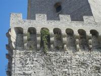 Torre del Balio - particolare - 12 agosto 2012  - Erice (391 clic)