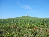 la casa sulla collina - UMMARI - 1 aprile 2012  - Trapani (1684 clic)