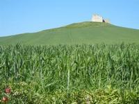 la casa sulla collina - UMMARI - 1 aprile 2012  - Trapani (515 clic)