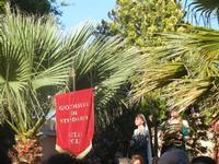 Corteo Storico di Santa Rita - 10ª Edizione - 27 maggio 2012  - Castelvetrano (300 clic)