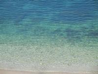 il mare di Cala Petrolo - 27 marzo 2012  - Castellammare del golfo (526 clic)