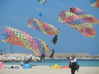 4° Festival Internazionale degli Aquiloni - 24 maggio 2012  - San vito lo capo (277 clic)