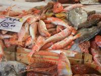 pescheria - triglie e pesci vari - 16 luglio 2012  - Trapani (564 clic)