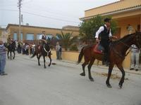 SPERONE - sfilata di cavalli - festa San Giuseppe Lavoratore - 29 aprile 2012  - Custonaci (510 clic)