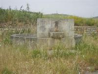 fontana-bevaio rotonda - 20 maggio 2012  - Salaparuta (1277 clic)