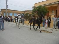 SPERONE - sfilata di cavalli - festa San Giuseppe Lavoratore - 29 aprile 2012  - Custonaci (456 clic)