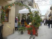 Festa di Primavera - Sagra della salsiccia, del pane cunzato e dell'arance di Calatafimi Segesta - 22 aprile 2012  - Calatafimi segesta (505 clic)
