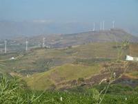 parco eolico e terre bruciate - 15 agosto 2012  - Alcamo (229 clic)