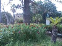 Villa Comunale Ignazio Scaturro - 6 settembre 2012  - Sciacca (367 clic)