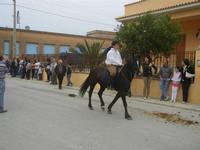 SPERONE - sfilata di cavalli - festa San Giuseppe Lavoratore - 29 aprile 2012  - Custonaci (458 clic)