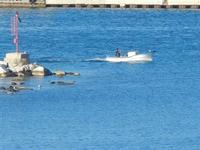 Cala Petrolo barca in uscita da porto - 13 gennaio 2012  - Castellammare del golfo (469 clic)