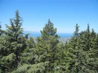 Santuario Madonna del Romitello - pineta e panorama - 9 maggio 2012  - Borgetto (909 clic)