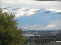 neve sui monti palermitani - 14 febbraio 2012  - Alcamo (455 clic)