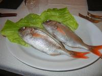 pesci mupa o occhione - Busith - 15 agosto 2012  - Buseto palizzolo (695 clic)