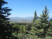 Santuario Madonna del Romitello - pineta e panorama - 9 maggio 2012  - Borgetto (1993 clic)