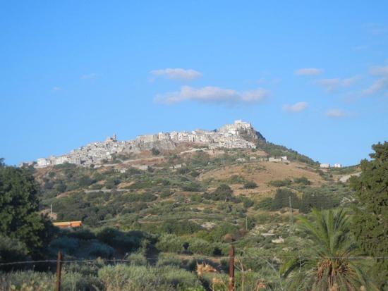 panorama della città - GIULIANA - inserita il 18-Dec-15