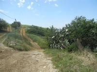 SIRIGNANO - Agriturismo - trazzere - 1 maggio 2012  - Monreale (865 clic)